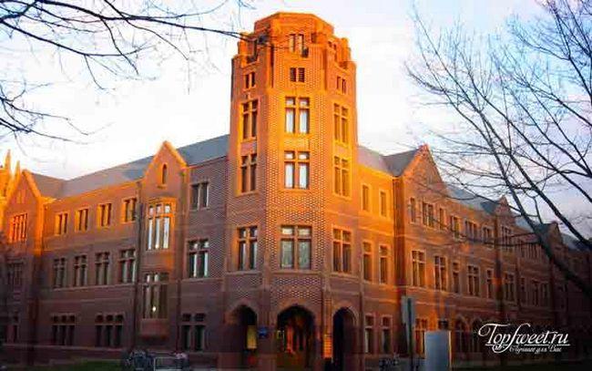 Єльський університет