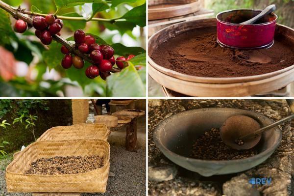 Найдорожча кава в світі